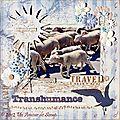 Transhumance (publié le 13/6/12)