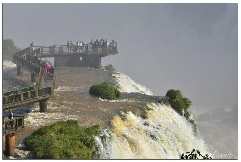 _Argentine_604_Iguazu_Bresil