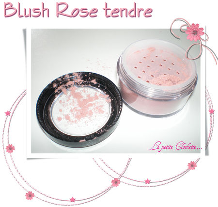 Blush_rose_tendre