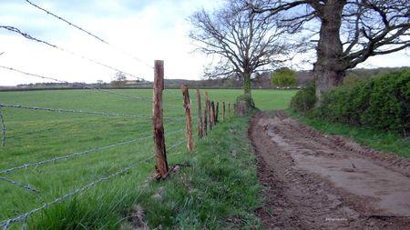 clôture-pour-élargir-chemin