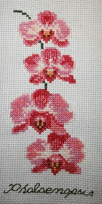 De belles orchid es les petites croix d 39 heidi - Grilles gratuites point de croix dmc ...