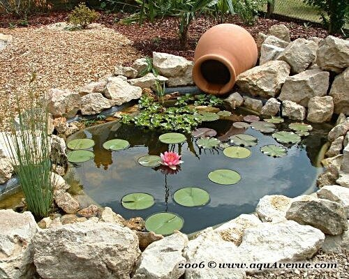 Le Charme Des Bassins De Jardin Article Co