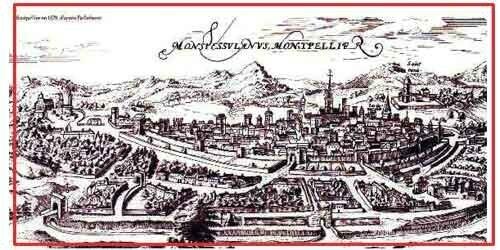 Montpellier 985