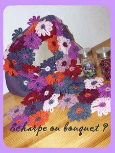 _charpe1ff