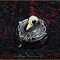 Boite bijoux piercing pilulier gothique victorien crane oiseau