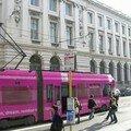 Bruxelles - Ici les trams sont roses