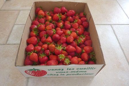 Cageot_fraises