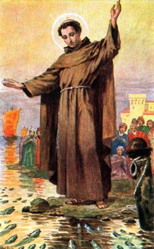 Antonius_von_Padua_Fischpredigt_1-1