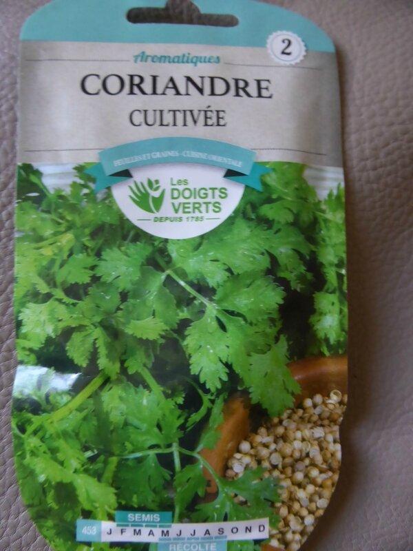 4-graine-coriandre