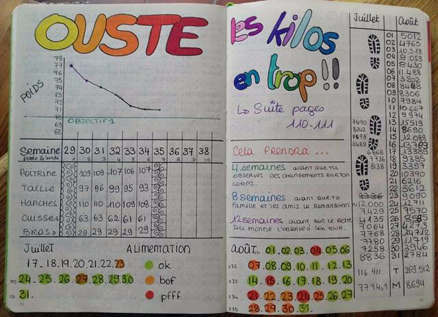 bujo_poids 2017 07 08 complet