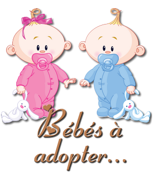 adopter