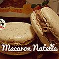 Macaron poudre de noisette et ganache nutella - gourmande