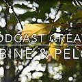 Podcast créatif - ep. 12 - une montagne de projets