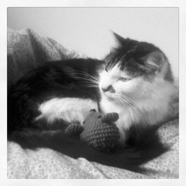 fête des chats de blogueuses souris crochet
