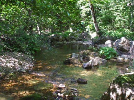 riviere en cevennes!