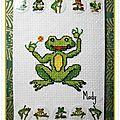 289 grenouille chez Miou