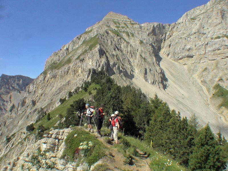 Crêtes de Quinquambaye de Saint-Michel-les-Portes - Font Rousse (1150 m)