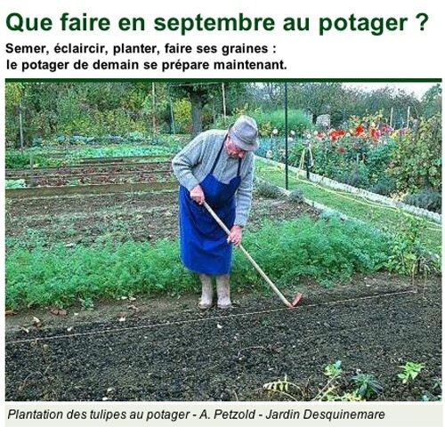potager septembre