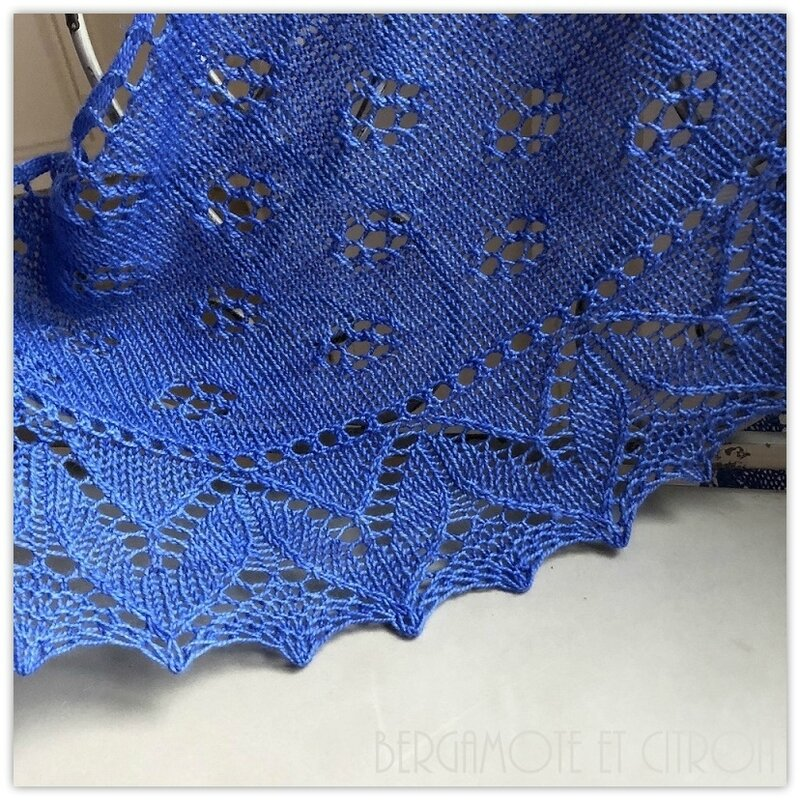 premices-bleu01 Patron