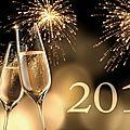*~*~*~* bye bye 2015, bonjour 2016 ! *~*~*~*