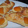 Oreillettes aux abricots