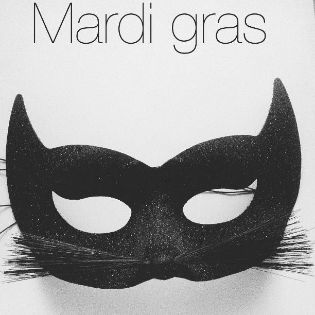 masque chat mardi gras