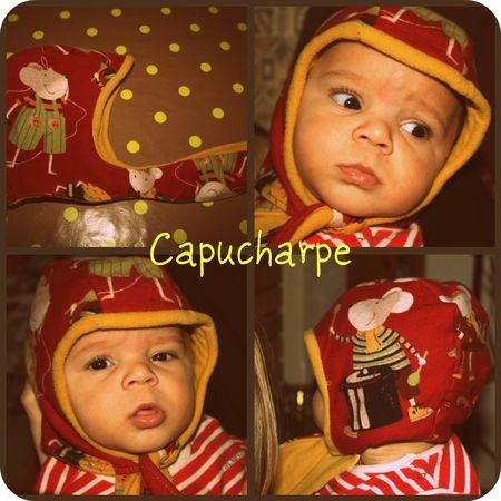 capucharpe_souris