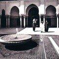 Mosquée de paris : images d'un édifice