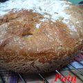 Pain au levain fermentescible bio (cuisson cocotte)