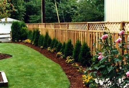 lattice_top_cedar_fence_with_landscaping