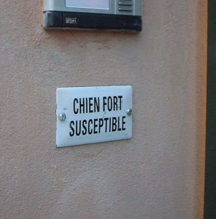 attention_au_chien
