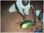 panne taxi et pastèque partagée 1 Mali