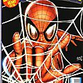 Panini marvel : spiderman v2