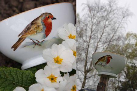 oiseau_2_modifi__1
