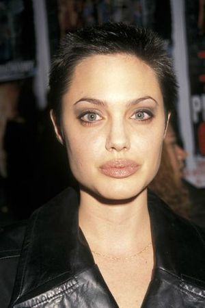 le_cv_beaut___d_angelina_jolie_16112195_north_320x