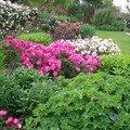 Visite du nouveau jardin…