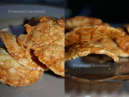 Tuiles_Amandes3