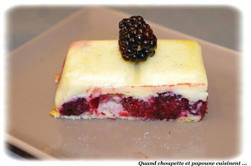 gâteau magique aux mûres-1182