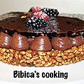 Fantastik au chocolat, mûres et framboises de christophe michalak