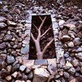 -andy-goldsworthy