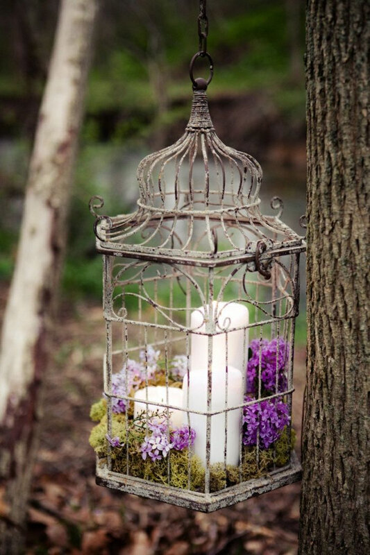 98a226ffc1066712404f54f949109213--centre-table-bird-cages