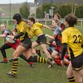 66IMG_0914T