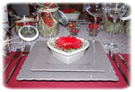 table_rouge_029