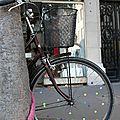vélo étoiles_7565