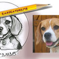 Caricature Chien Beagle