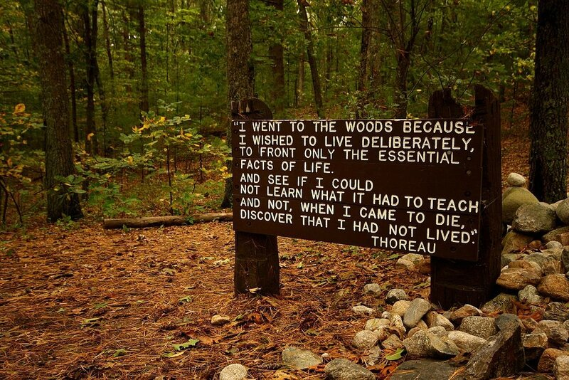 1024px-Thoreaus_quote_near_his_cabin_site,_Walden_Pond
