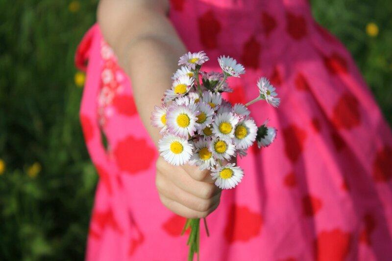 fleurs mélanie