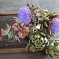 25-ARTICHAUTS www.passionpotager.canalblog.com