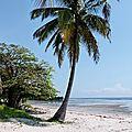05-Tz, plage du camping de Bagamoyo