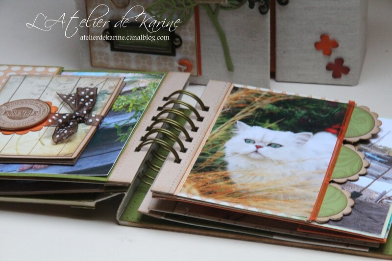 Mini Album et son coffret - Pure Lorelaïl Design 31